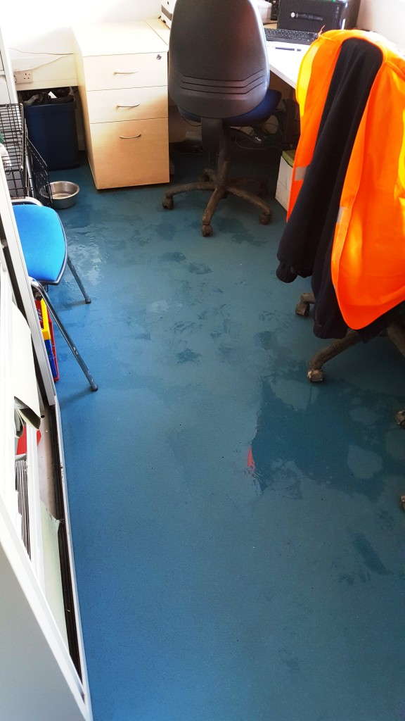 Farm Office Safety Flooring After Cleaning Saffron Walden